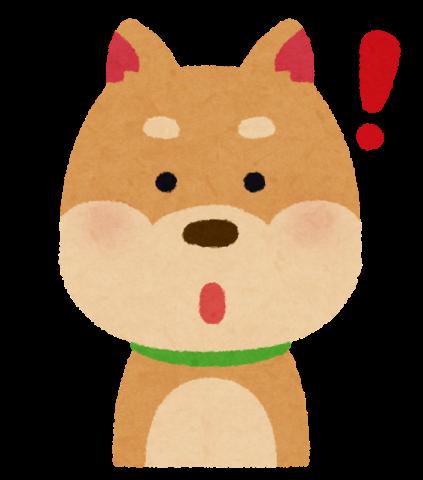 犬がひらめいた!!